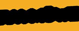 R.V. Möwe Logo